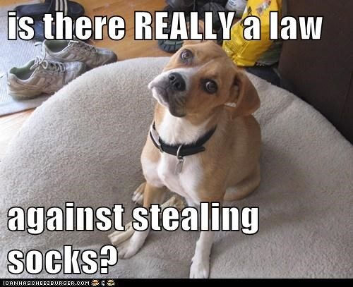 is there REALLY a law  against stealing socks?