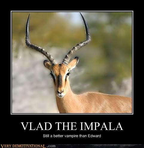 edward hilarious impala twilight vlad - 5743775488