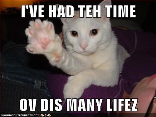 caption captioned cat counting had lives paw this many time toes