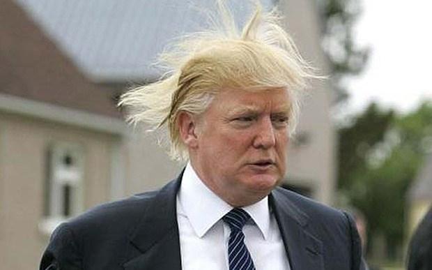 twitter donald trump funny politics - 574469