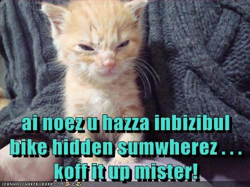 Cheezburger Image 5745333760