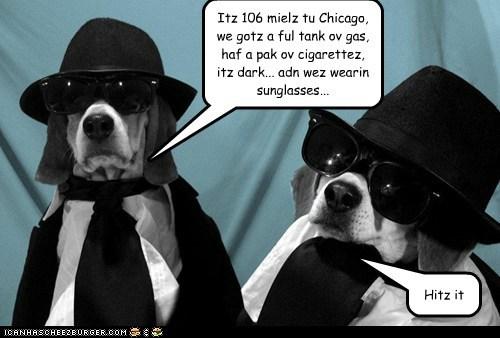 Itz 106 mielz tu Chicago, we gotz a ful tank ov gas, haf a pak ov cigarettez, itz dark... adn wez wearin sunglasses... Hitz it