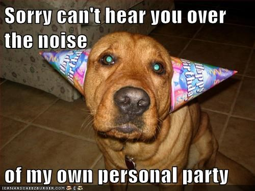 i-cant-hear-you,noise,Party,party hat,party time,personal party,whatbreed