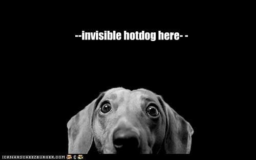 --invisible hotdog here- -