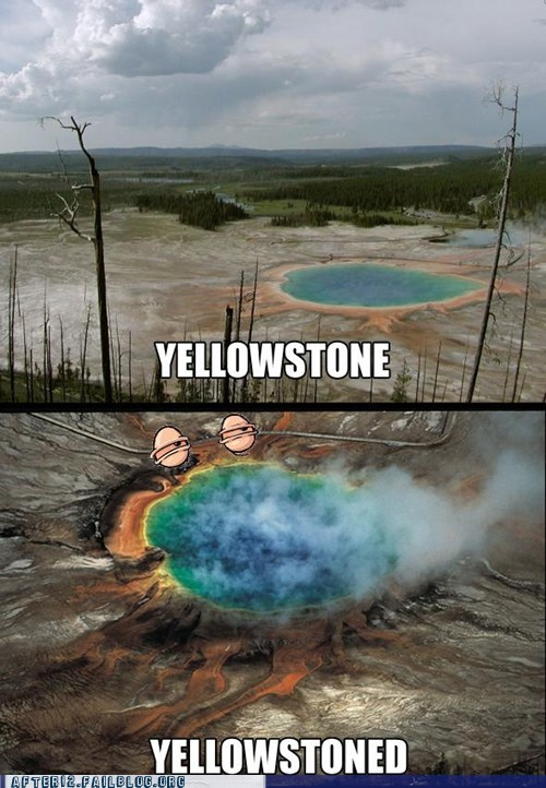 drugs high pun stoned yellowstone - 5747156736