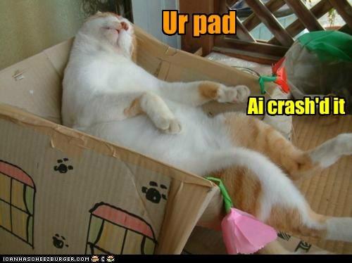 Ur pad Ai crash'd it