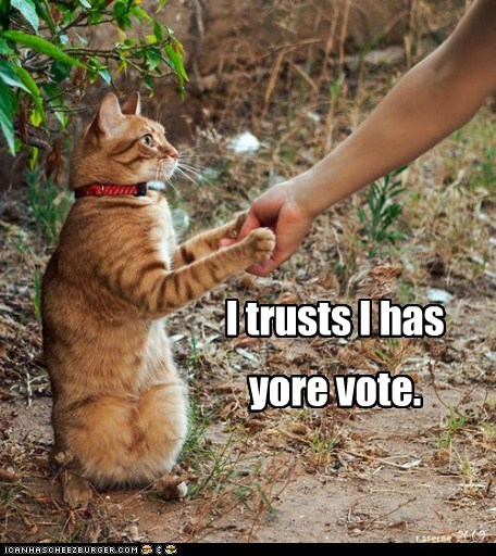 campaign caption captioned cat hand handshake has politics shaking trust vote - 5748096768