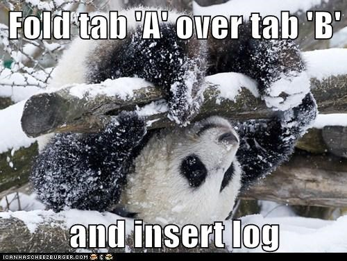 ä b caption captioned fold insert instructions log over panda panda bear tab