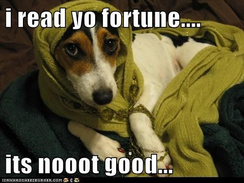 i read yo fortune.... its nooot good...