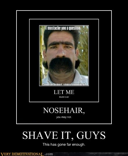 SHAVE IT, GUYS This has gone far enough.