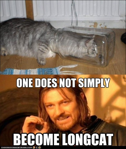 Boromir jars long long cat longcat Lord of the Rings Memes mordor multipanel one does not simply sean bean stretched out stretching wtf - 5750609664