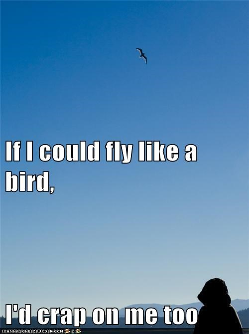 If I could fly like a bird, I'd crap on me too