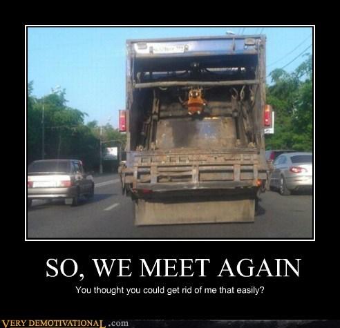 creepy ewok garbage hilarious wtf - 5753589504