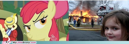 apple bloom apple family farm be quiet cider flim flam meme - 5755165440