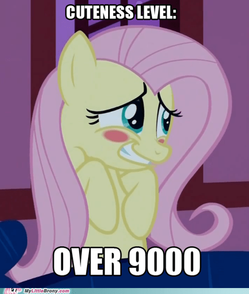 best of week blush cuteness level embarassed fluttershy meme over 9000 - 5755392256