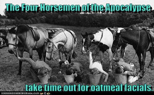 animals facial four horsemen of the apocalypse historic lols horses oatmeal vintage - 5755461888