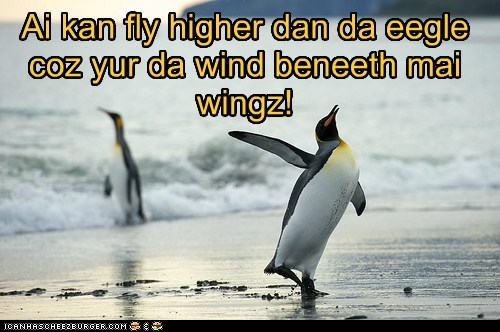 Ai kan fly higher dan da eegle coz yur da wind beneeth mai wingz!