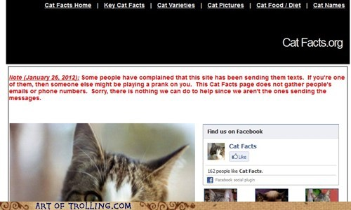 cat facts spam texts - 5756063488