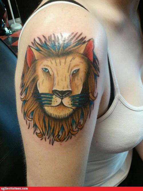 animals Cats - 5756869120