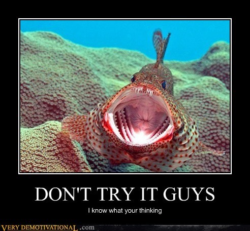 eww fish hilarious scary sexy times - 5758070272
