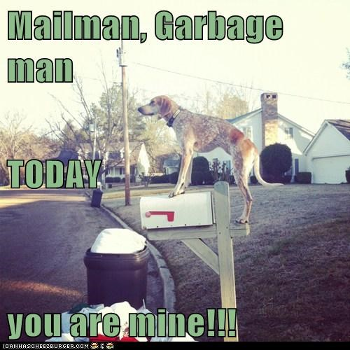 attack,garbage man,mailman,todays-the-day,whatbreed