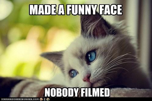 First World Cat first world cat problems - 5758505216