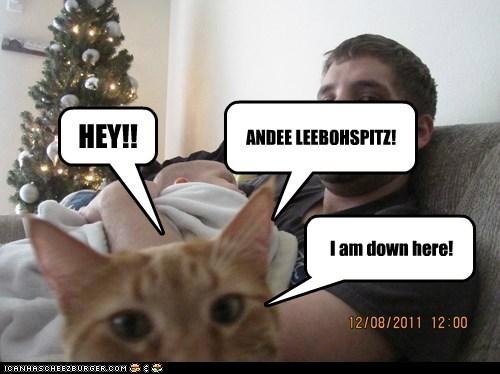 HEY!! ANDEE LEEBOHSPITZ! I am down here!
