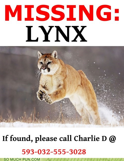 double meaning,flyer,link,links,literalism,lynx,missing,poster