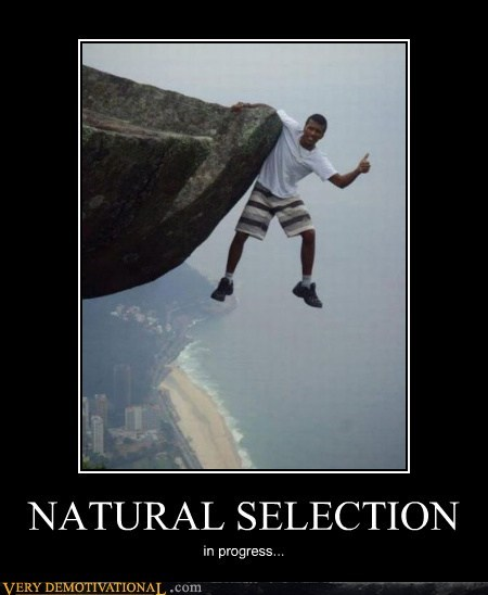 bad idea cliff idiots natural selection wtf - 5762973696