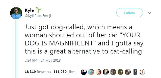 twitter tweets funny tweets animal tweets animals - 5763333
