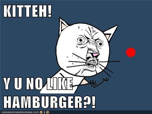 Cheezburger Image 5763421440