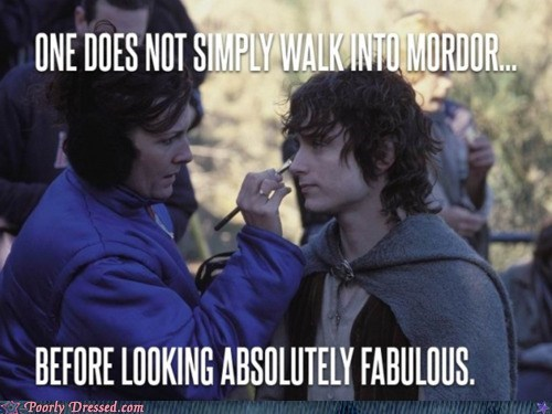 frodo looking fabulous Lord of the Rings walking into mordor meme