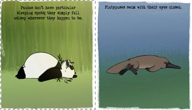 illustrations of animals sleeping