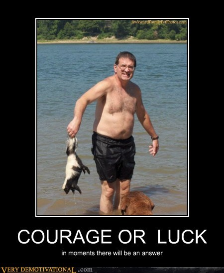 courage hilarious luck skunk wtf - 5764382976