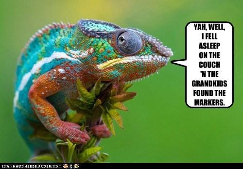 fashion police chameleon funny - 5764402944