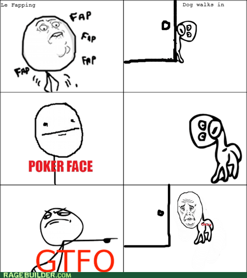 dogs,faptimes,gtfo,Okay,poker face,Rage Comics