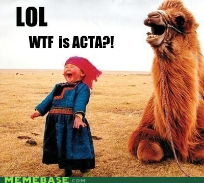 Acta,camel,kids,third world,Third World Success Kid