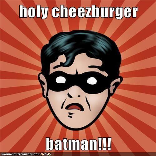 Cheezburger Image 5765488896