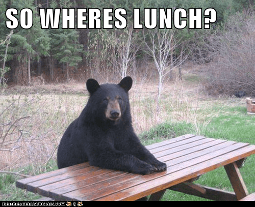 hungry,bear,lunch