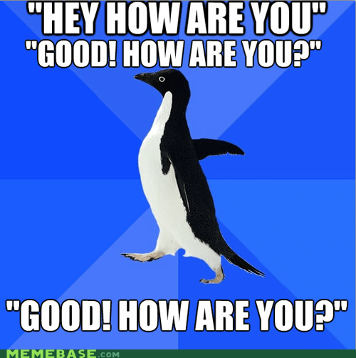 good how are you introduction socially awkward penguin - 5766336512
