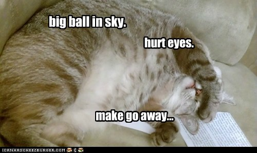 ball,best of the week,big,caption,captioned,cat,do not want,eyes,go away,hurt,morning,pain,request,sky,sun