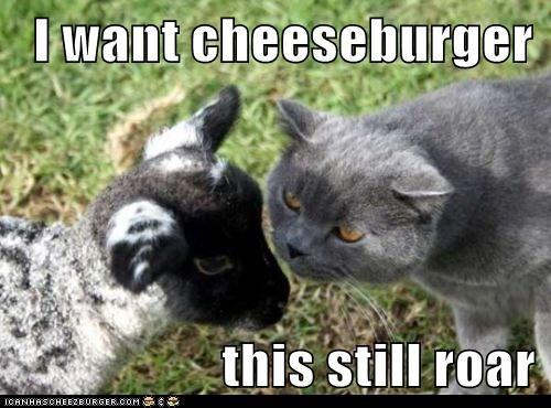 Cheezburger Image 5767725312