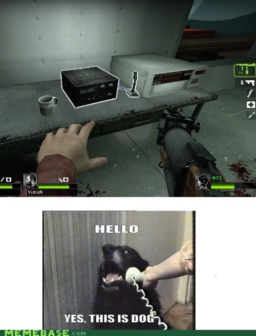 dogs,Left 4 Dead,Memes,zombie