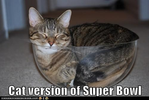 bowls caption captioned comfort is relative football puns sleeping sports super bowl the Big Game - 5769798656