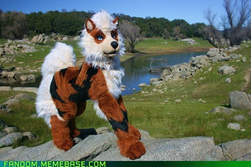 arcanine cosplay fursuit Pokémon - 5769808128