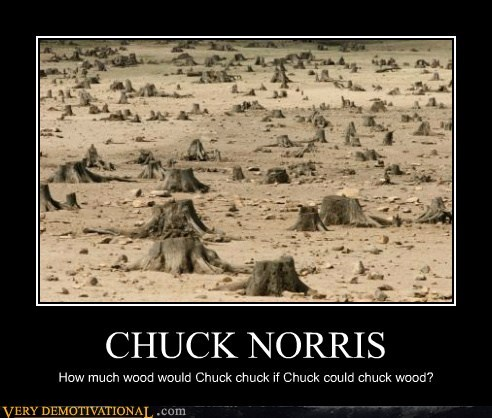 chuck norris,deforestation,Sad,woodchuck
