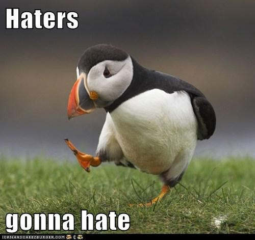 haters gonna hate,strutting,puffin