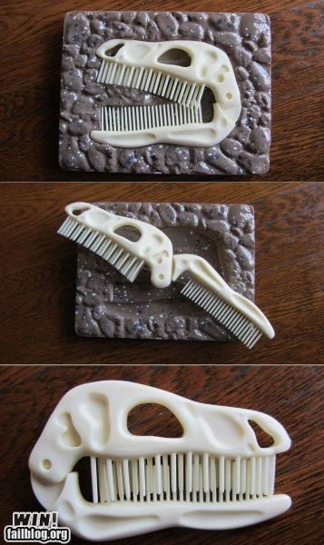 clever comb design dinosaur fossil - 5770762240
