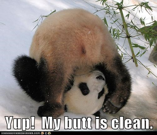 butt clean checking rolling yup panda - 5770944512