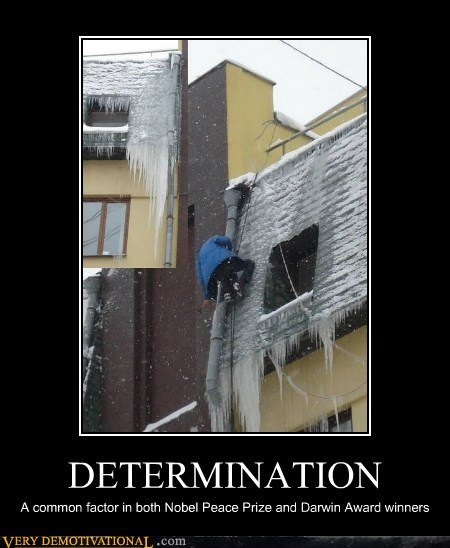 darwin awards,determination,idiots